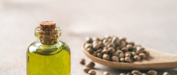 Benefits of using Hemp Oil