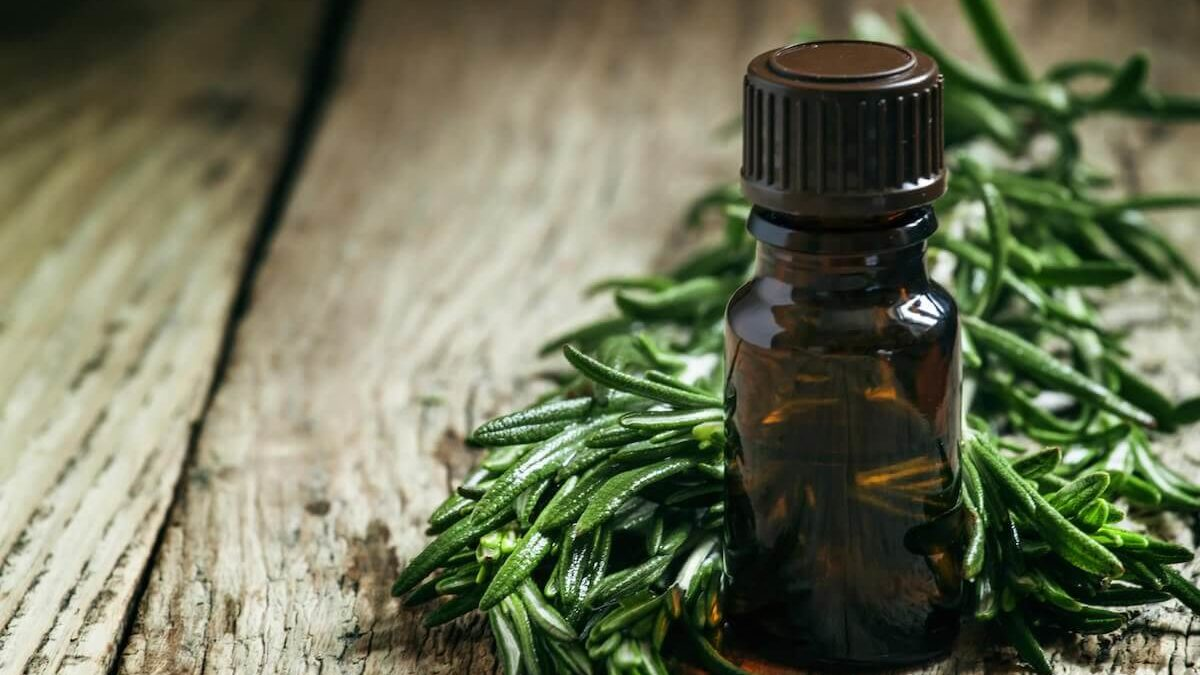 15 Uses for Tea Tree Oil
